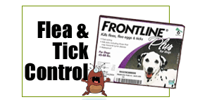 Flea &amp; Tick Control